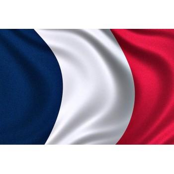Стикер за таван Френско знаме -  Peugeot 206