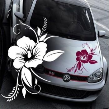 Хавайско цвете
