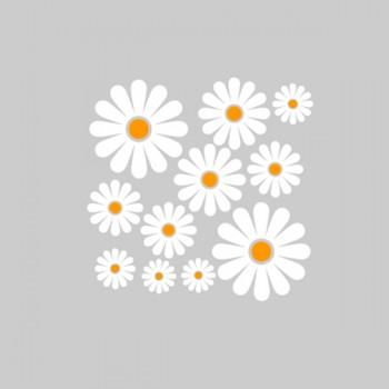 Лепенки цветя - Маргаритки