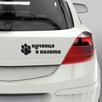 Кученце в колата
